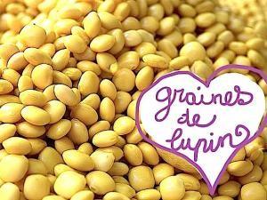 connaissez-vous-les-graines-de-lupin-1548118
